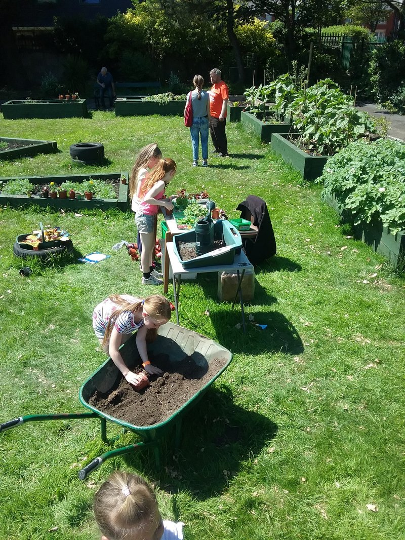 Children in Revoe Community Garden 2